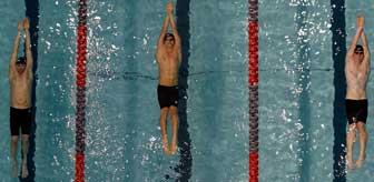 Swimnet upcoming